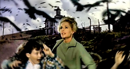 "Most critics attacked ""The Birds."" But movie audiences flocked to it."